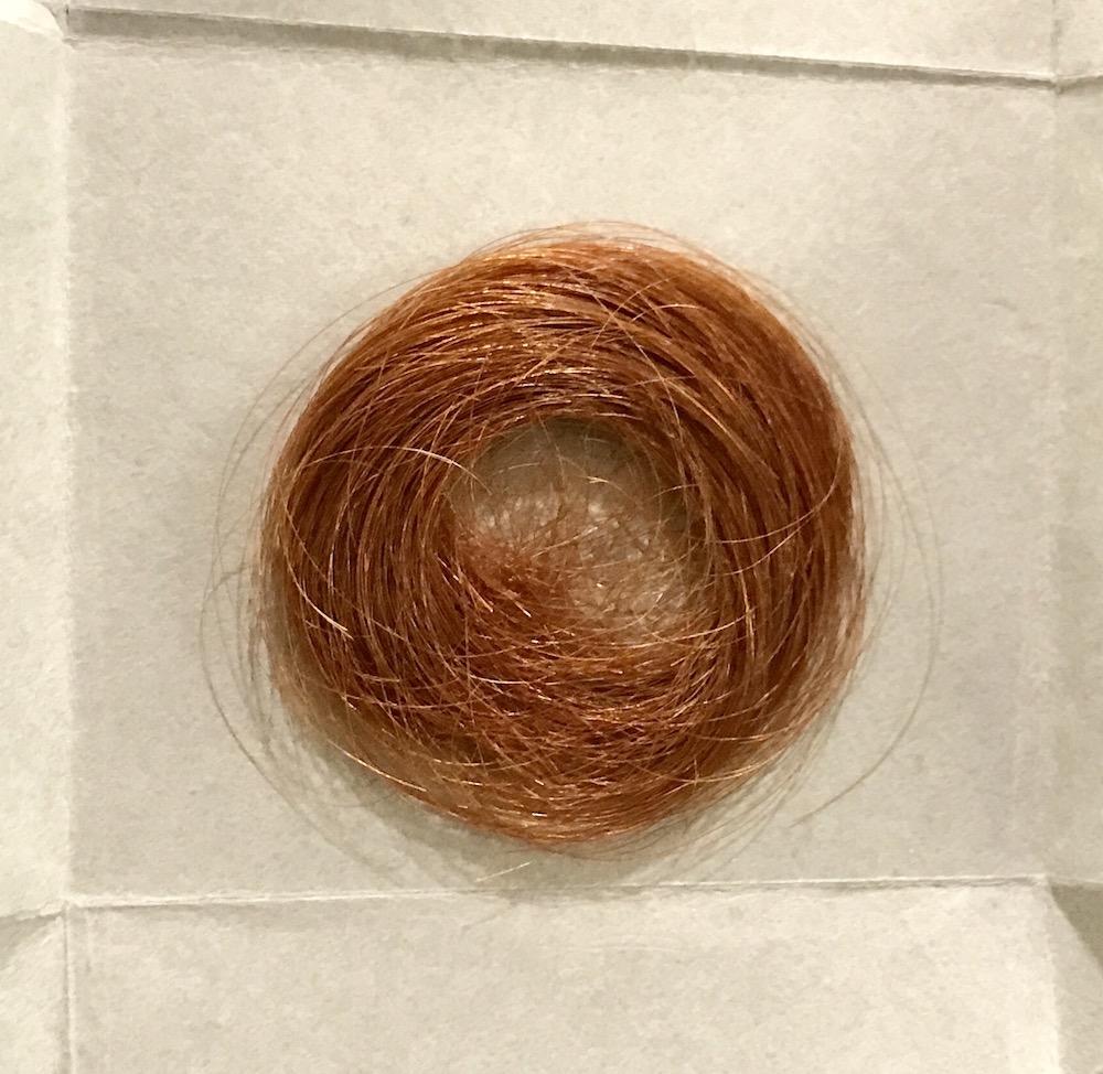 A lock of Emily Dickinson's hair